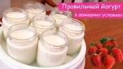 Набор заквасок йогурта Лактоферм_2
